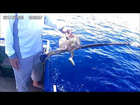 Bintulu 2017 fishing