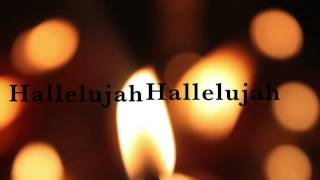 "SYDNEY HAIK's cover of ""Hallelujah"""