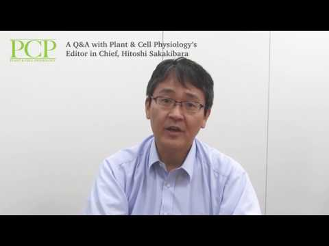 A Q&A with Plant & Cell Physiology's Editor in Chief, Hitoshi Sakakibara Part I