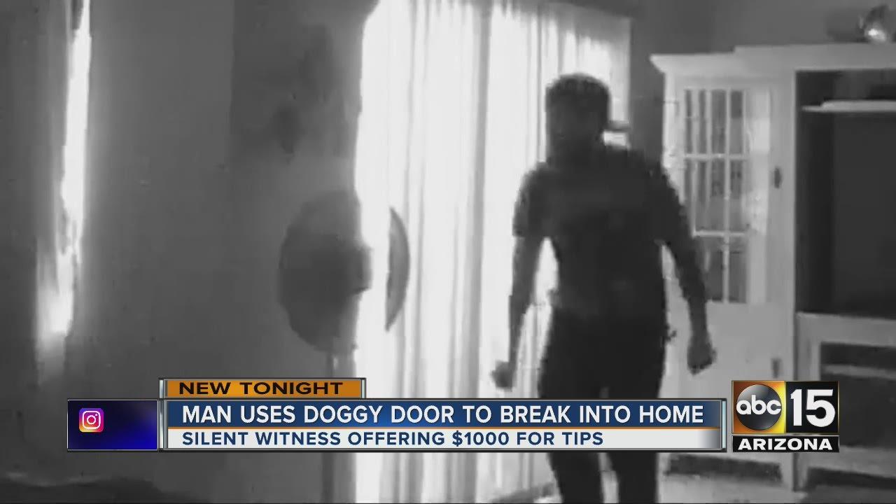 \u0027Doggie door burglar\u0027 wanted in Phoenix & Doggie door burglar\u0027 wanted in Phoenix - YouTube Pezcame.Com
