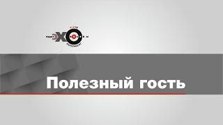 Полезный Гость / Евгений Кислицын // 29.04.21