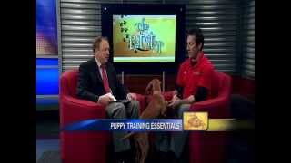 Puppy Training - News12 New Jersey The Pet Stop Jan 28, 2012