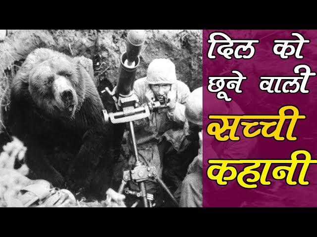 विश्वयुद्ध - 2 का महान सैनिक था ये भालू  || Real Story Of SOLDIER BEAR Wojtek