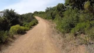 Kenedy Fireroad Sierra Azul Open Space Preserve