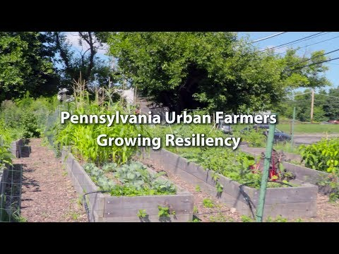 Pennsylvania Urban Farmers: Growing Resiliency