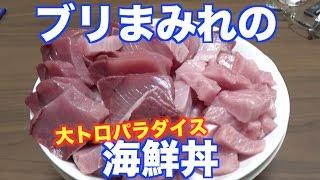 大量に釣れたブリを贅沢に使って海鮮丼!!