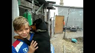 Мешок для творога /Про индюков/ Дети и наши животные.