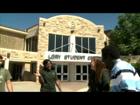 Transfer Student Experience at Colorado State University