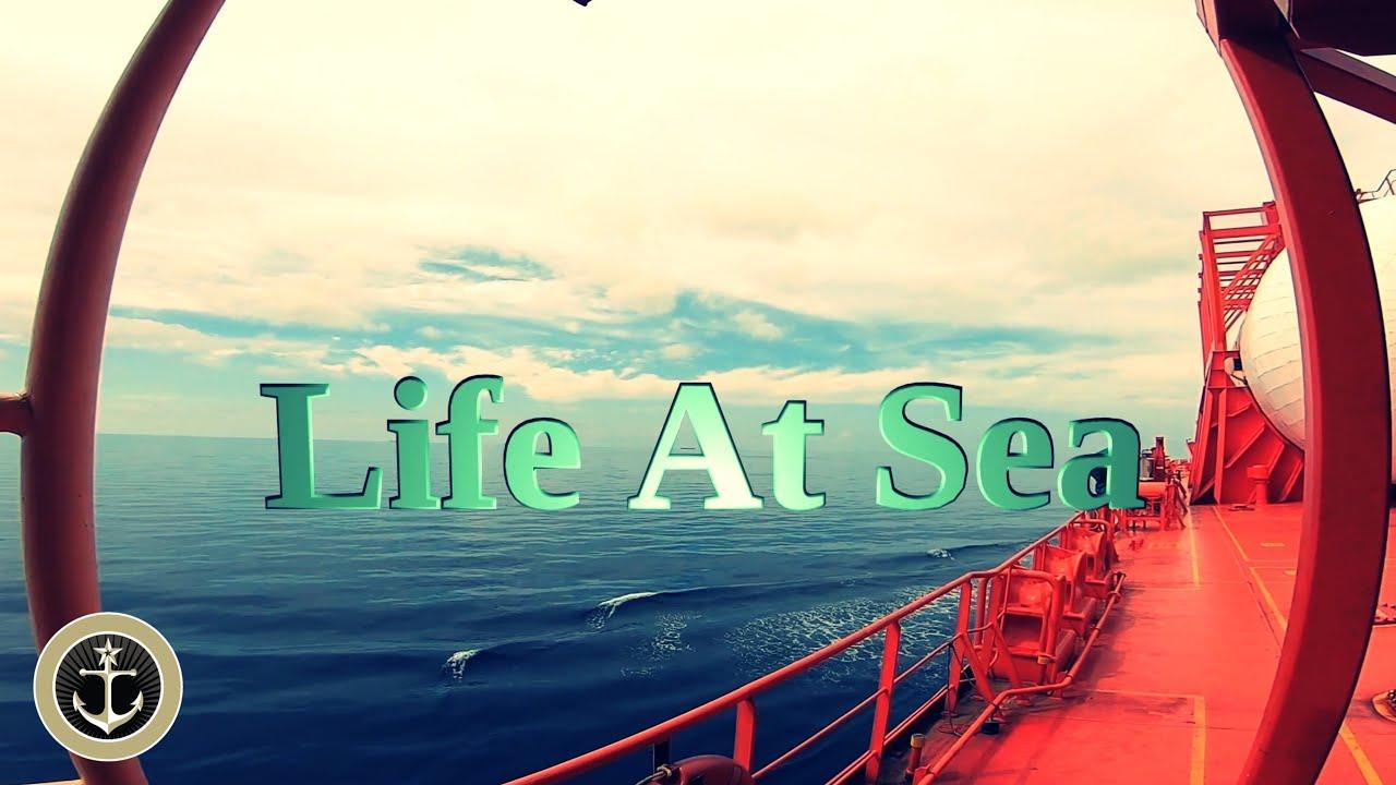 Viața pe MARE - Imagini SUPERBE