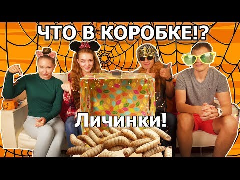 ЧТО В КОРОБКЕ Челлендж! Хеллоуин версия🎃 What's in the box challenge