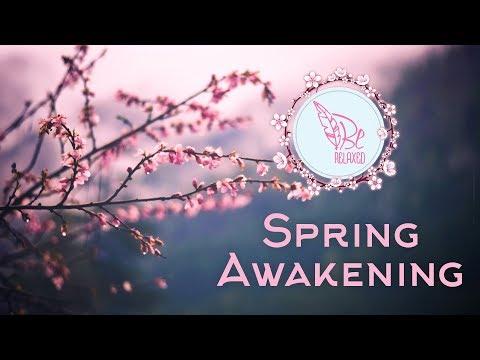 Spring awakening - Find energy in yourself