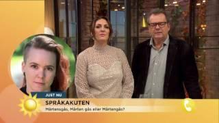 Mårten gås, Mårtensgås eller Mårtengås? - Nyhetsmorgon (TV4)