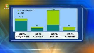 GMO Crops Adoption