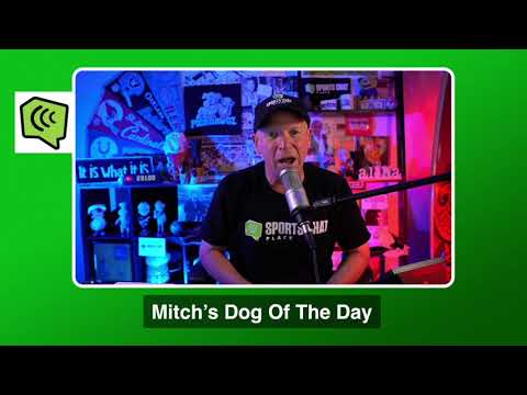 Mitch's Dog of the Day 10/25/20: Free NFL Pick NFL Picks, Predictions and Betting Tips