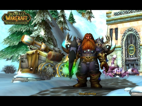 Quick bm hunter pve guide (2. 4. 3) [wow tbc] youtube.