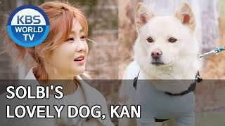 Solbi's lovely dog, Kan [Dogs are incredible/ENG/2020.04.14]