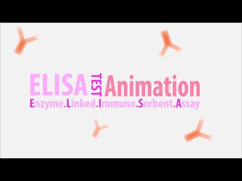 ELISA test principles Animated HD - Enzyme Linked Imunno Sorbent Assay HD