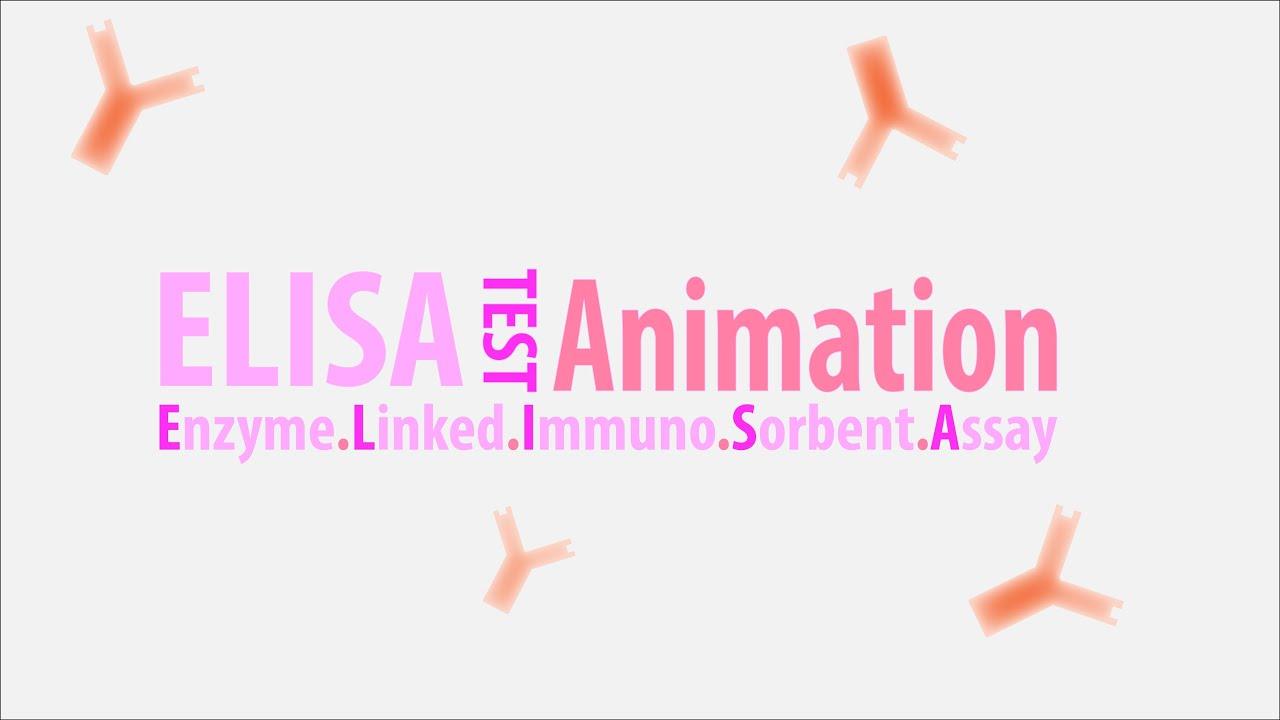 enzyme assay La técnica elisa (acrónimo del inglés enzyme-linked immunosorbent assay: 'ensayo por inmunoabsorción ligado a enzimas') es una técnica de inmunoensayo en la.