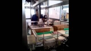 Автомат по укладке пакетов в гофрокороб(, 2015-05-05T12:06:18.000Z)