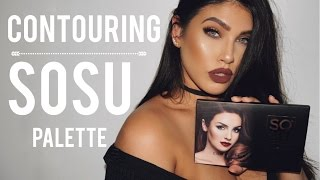 (11.7 MB) Contouring with SOSU Palette Mp3