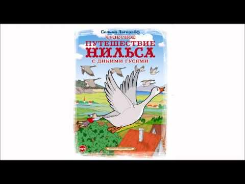Видеосказка Чудесное путешествие Нильса с дикими гусями. По повести Сельмы Лагерлёф. Часть 1.