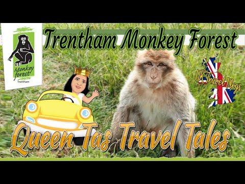 Trentham Monkey Forest / Queen Tas Travel Tales