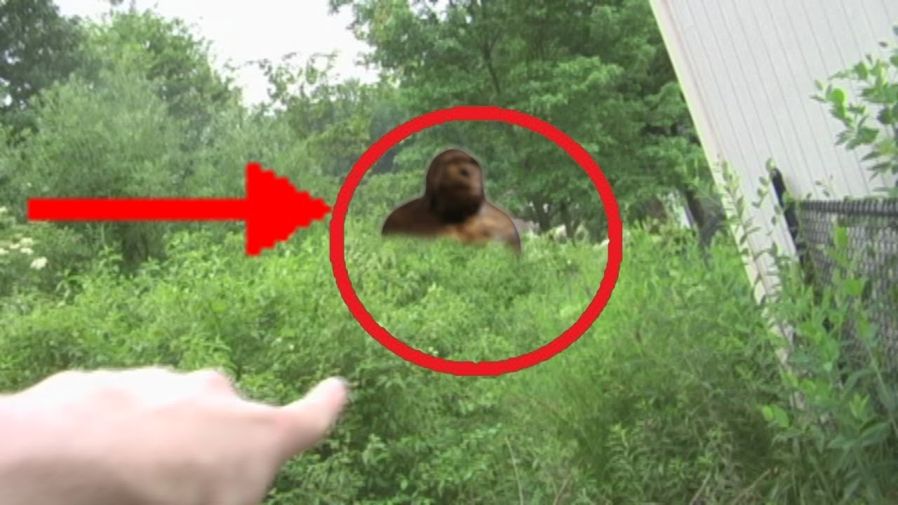 REAL BIGFOOT Caught on Tape! NEW! - YouTube