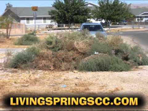 Destroying Weeds in Apple Valley!