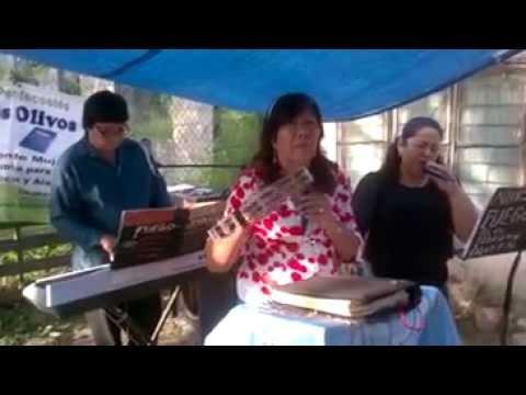 NO ESTOY SOLA V 5 HNA ELSA PALOMARES DE ARRATIA