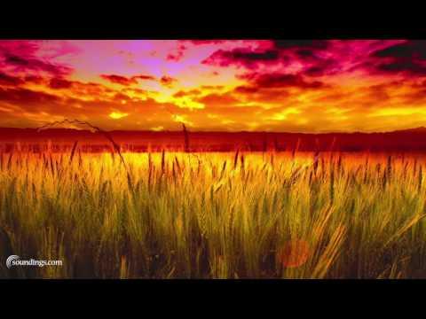Wonderful Soft Spa Music Playlist - Dean Evenson Music Mix