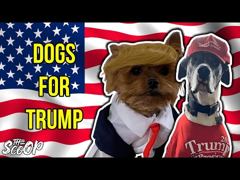 Dogs For Trump