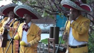 Популярные испанские песни танец  на свадьбу цена Москва, 8(985)920-36-97