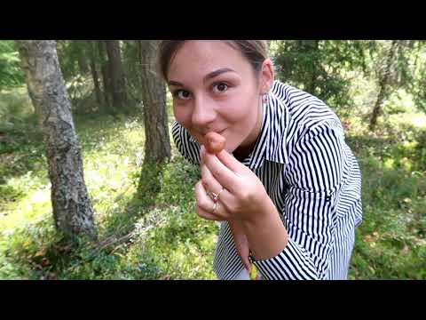 白俄罗斯姑娘苏莎2019年第一次尝试去森林采蘑菇