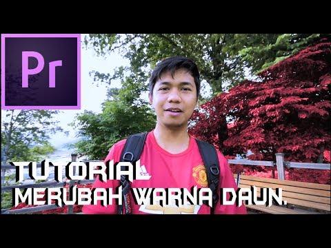 Cara Merubah Warna DAUN / Change Colour Background ( Premiere Pro CC)