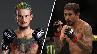 UFC 252: O'Malley vs Vera - Preview