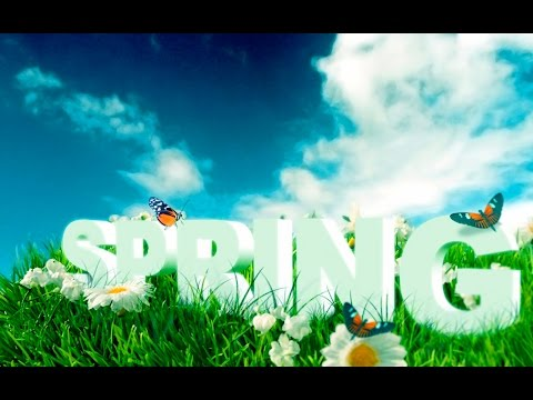 California Life HD | Episode 345: Celebrating Spring!