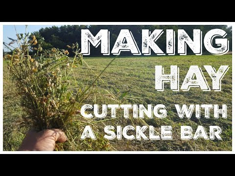 Making Hay - Cutting Hay With A Sickle Bar