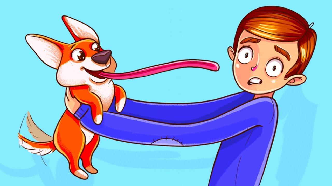 Наука доказала, что собаки понимают все, что мы говорим
