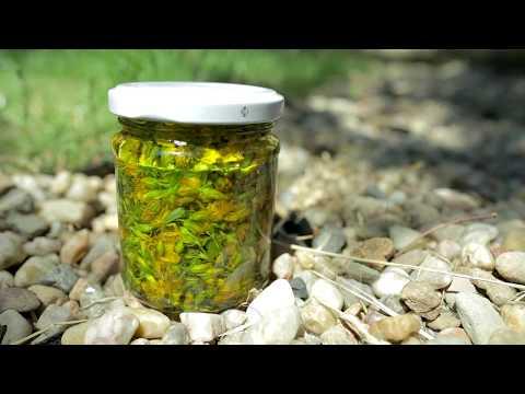 Třezalkový olej, Bylinky revue