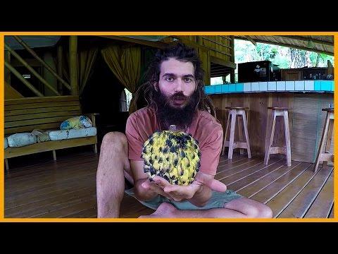 KNOW YOUR FRUITS EPISODE 12: ROLLINIA (BIRIBA) THE LEMON MERINGUE PIE FRUIT