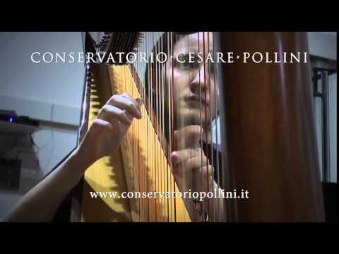 spot CONSERVATORIO POLLINI - 13s