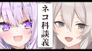 【雑談】ぼたんとおかゆのネコ科邂逅【#ぼたゆん/ホロライブ】