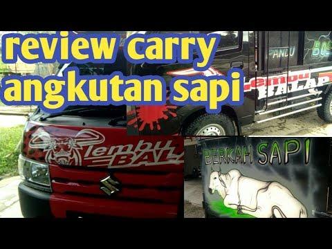 Suzuki carry 2019....angkut sapi