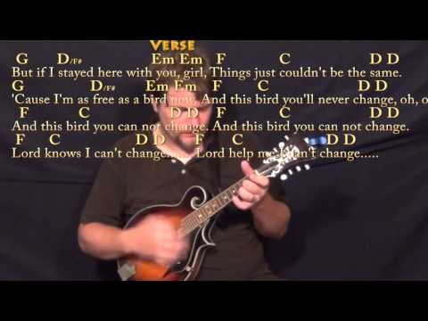 Mandolin mandolin chords and lyrics : Freebird - Mandolin Cover Lesson with Chords/Lyrics - YouTube