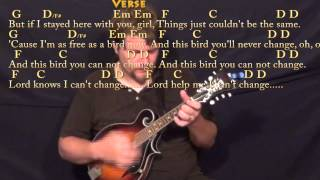 Freebird - Mandolin Cover Lesson with Chords/Lyrics