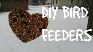 Diy Bird Feeders | Win Or Fail Friday!