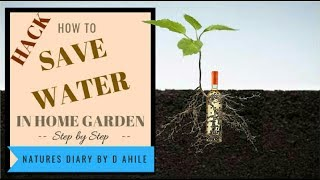 How to save plants in summer with minimum water feed  कम पाणि मै गरमियों मे पौधो को जिवित रखे