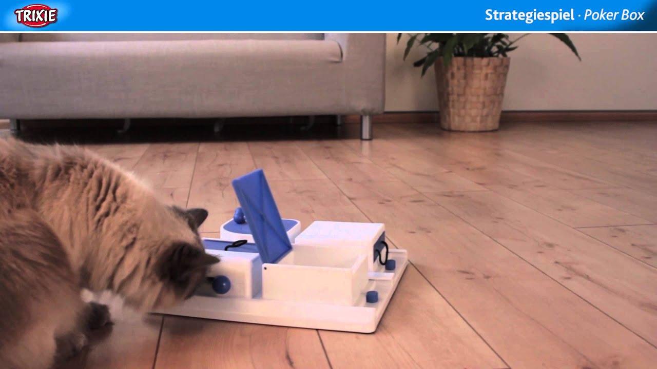 Trixie cat activity poker box rs pocket slot