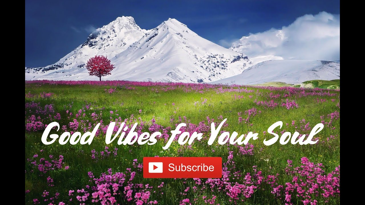 Beautiful Relaxing Music for Stress Relief • Meditation ...