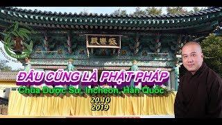 Đâu Cũng Là Phật Pháp - Thầy Thích Pháp Hòa ( Chùa Dược Sư, Incheon, Hàn Quốc, Ngày 20.10.2019 )